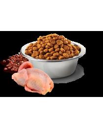 Farmina N&D - храна за Котки с пъдпъдъче месо, киноа, кокос и куркума 0.300 гр.