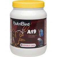 Nutri Bird A19- Храна за ръчно хранене на Новоизлюпени Големи Папагали