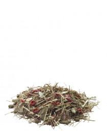 Versele Laga Fibrefood Chinchilla - храна за чинчили - възрастни и капризни 1 кг.