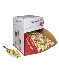 Vadigran SNACK DOG BISCUITS PUPPY MIX - деликатесни бисквитки, пъпи микс 10 кг.